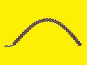 Flexibler Gliederheizkörper bogenförmig